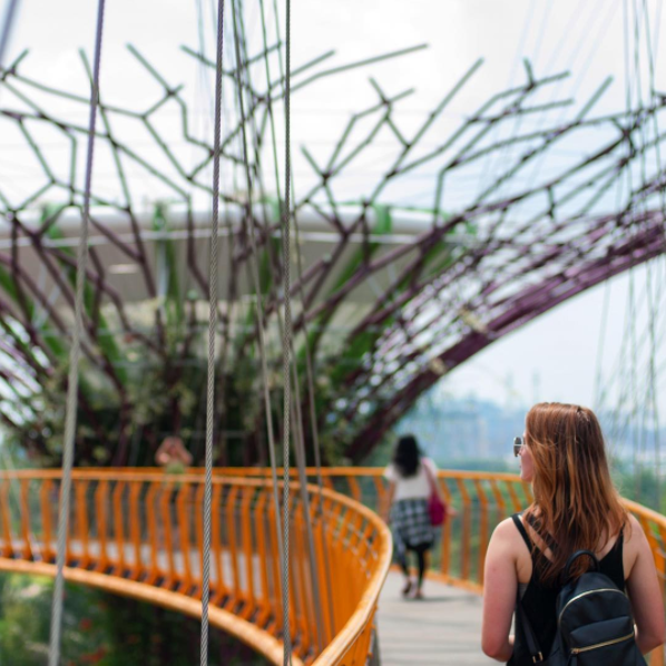 Behind the Filter: Gardens by the Bay by Real World Runaway