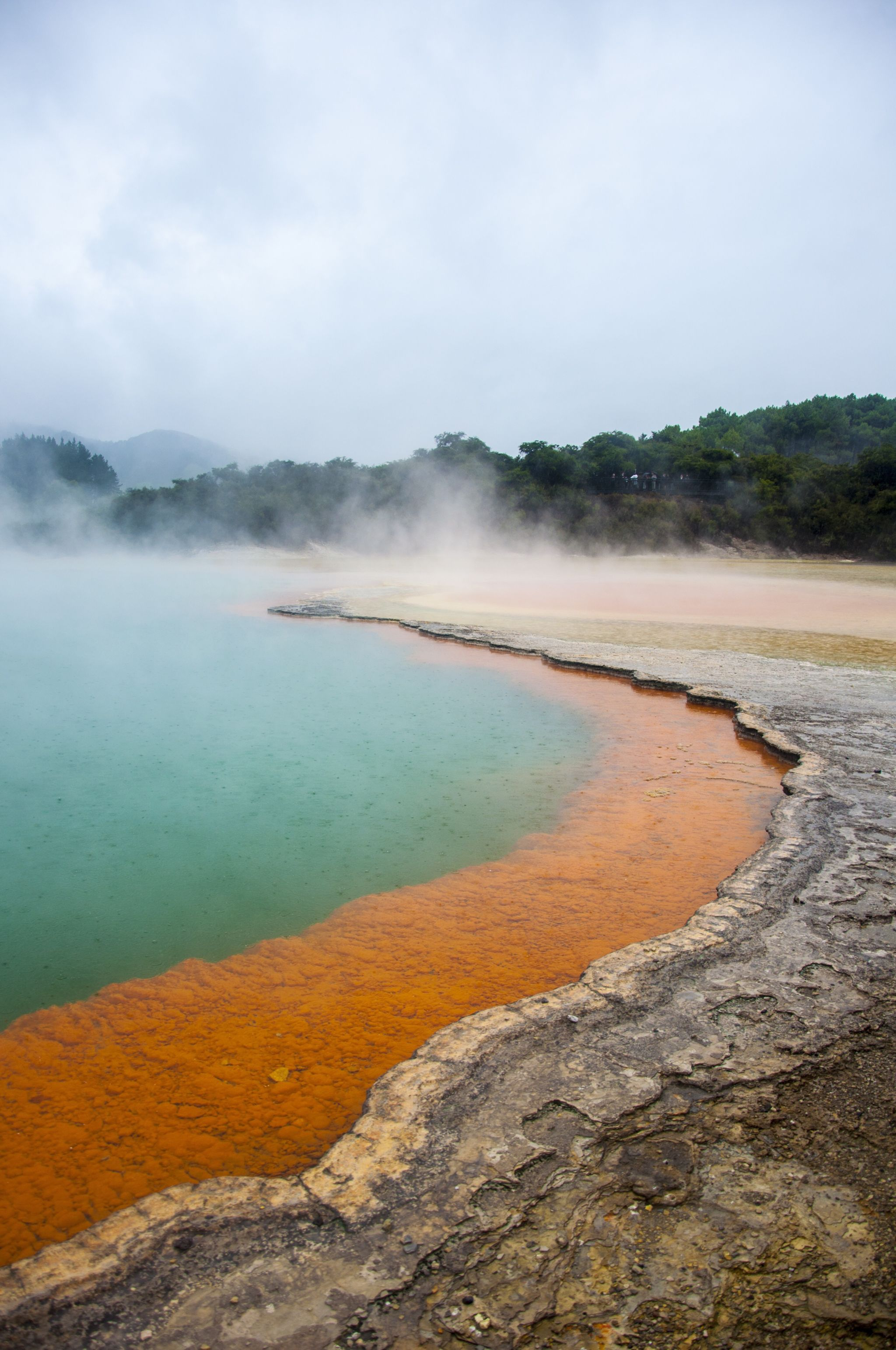 Wai-o-Tapu Real World Runaway