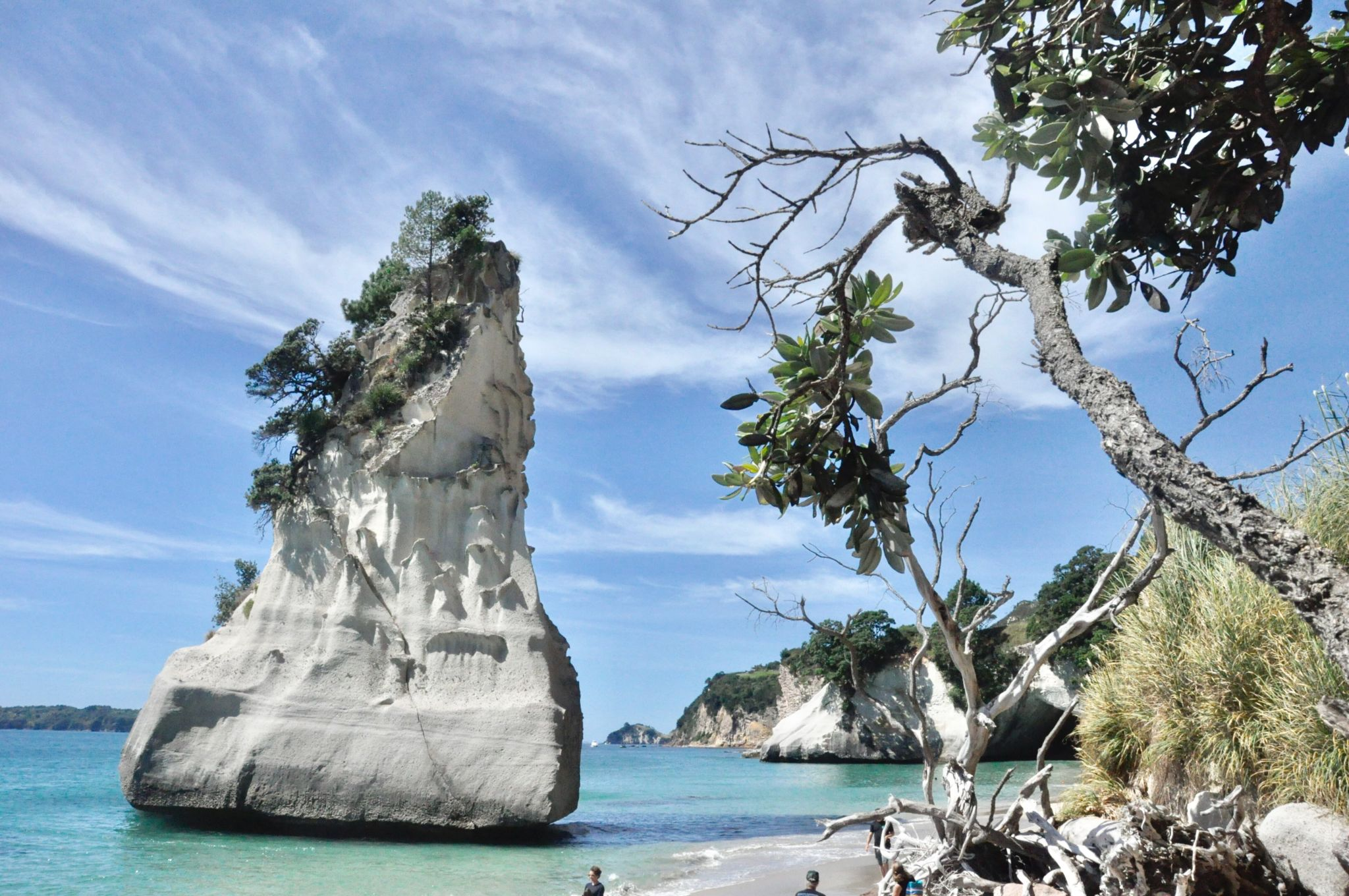Cathedral Cove Real World Runaway